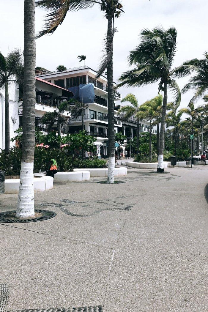 Travel Guide: Puerto Vallarta