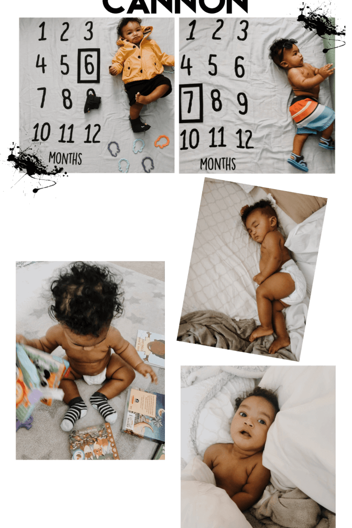 Six & Seven Months of Cannon