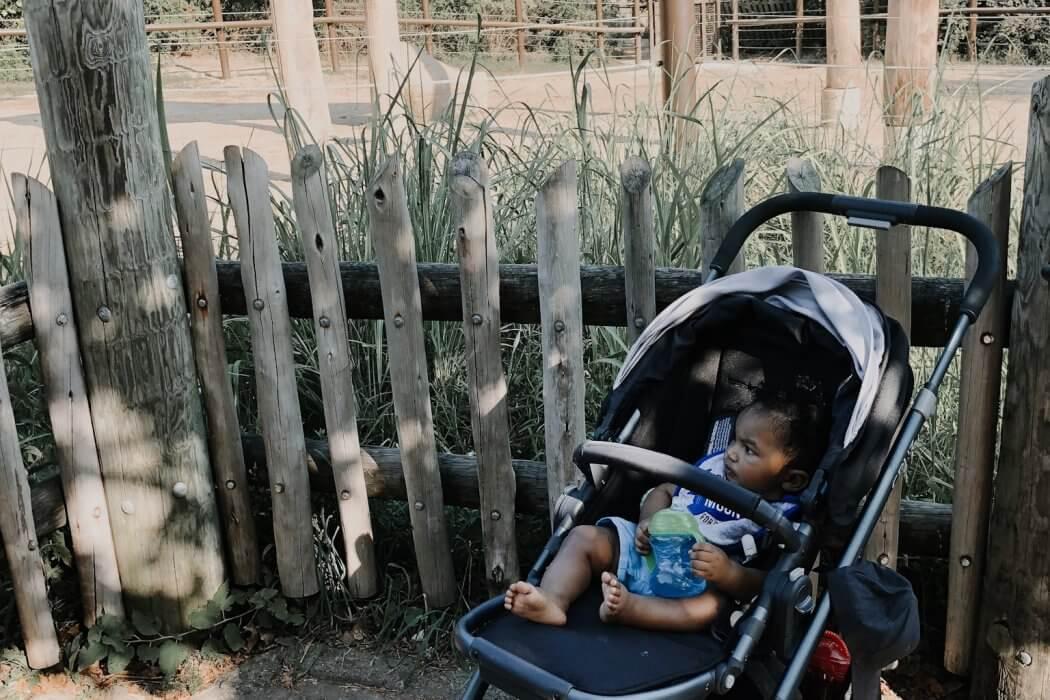 My Go To Stroller — UppaBaby Cruz