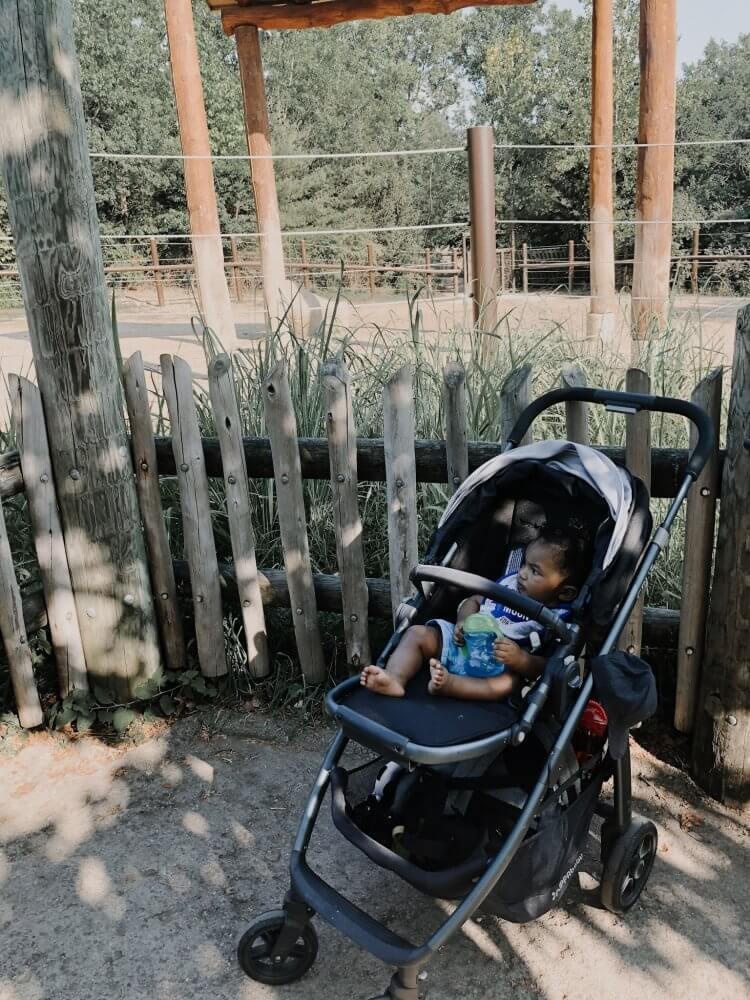 My Go To Stroller — UppaBaby Cruz